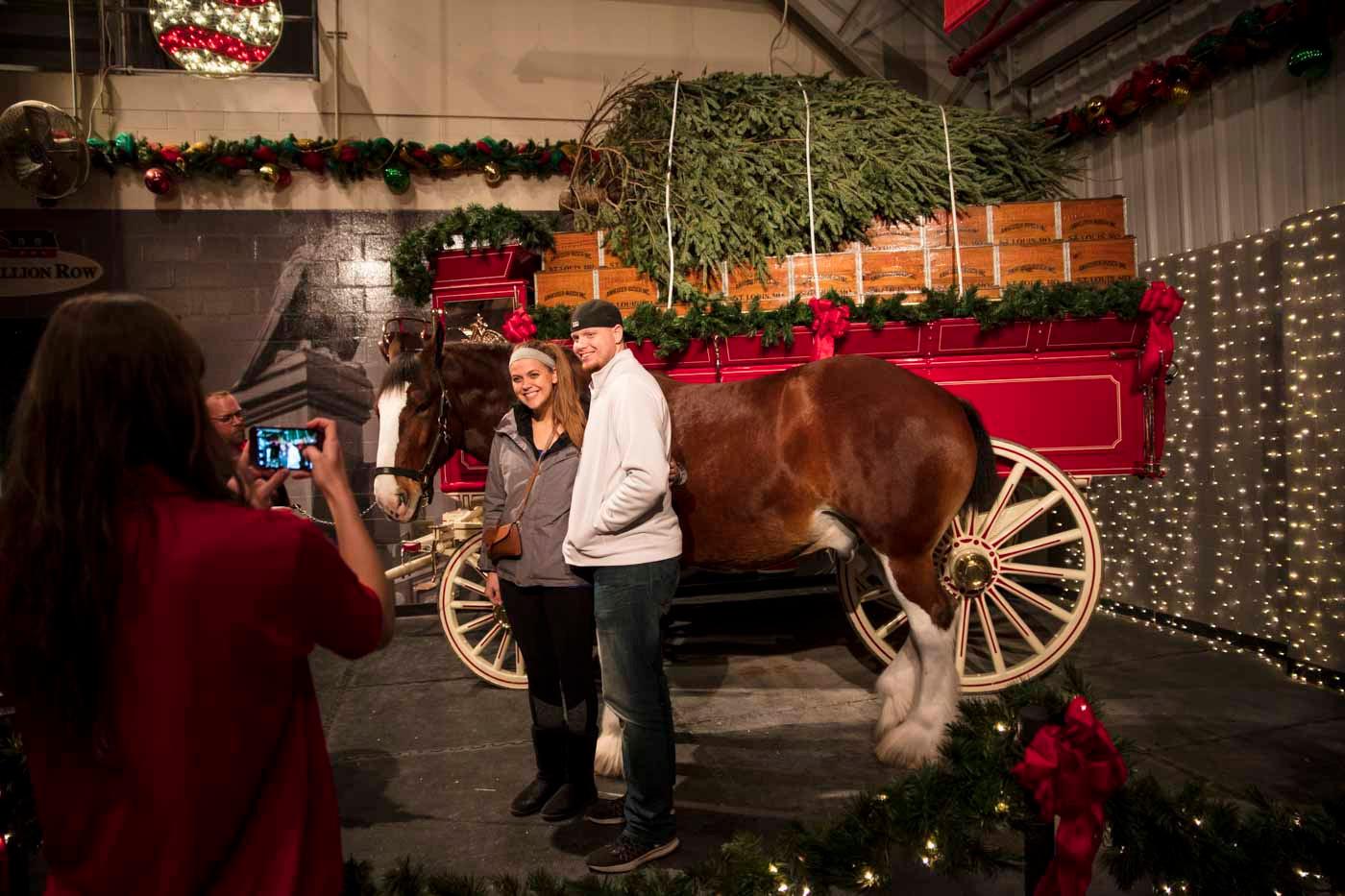 Warm Springs Ranch Christmas Lights 2020 Visit Missouri | Articles | Missouri Makes the Holiday Season
