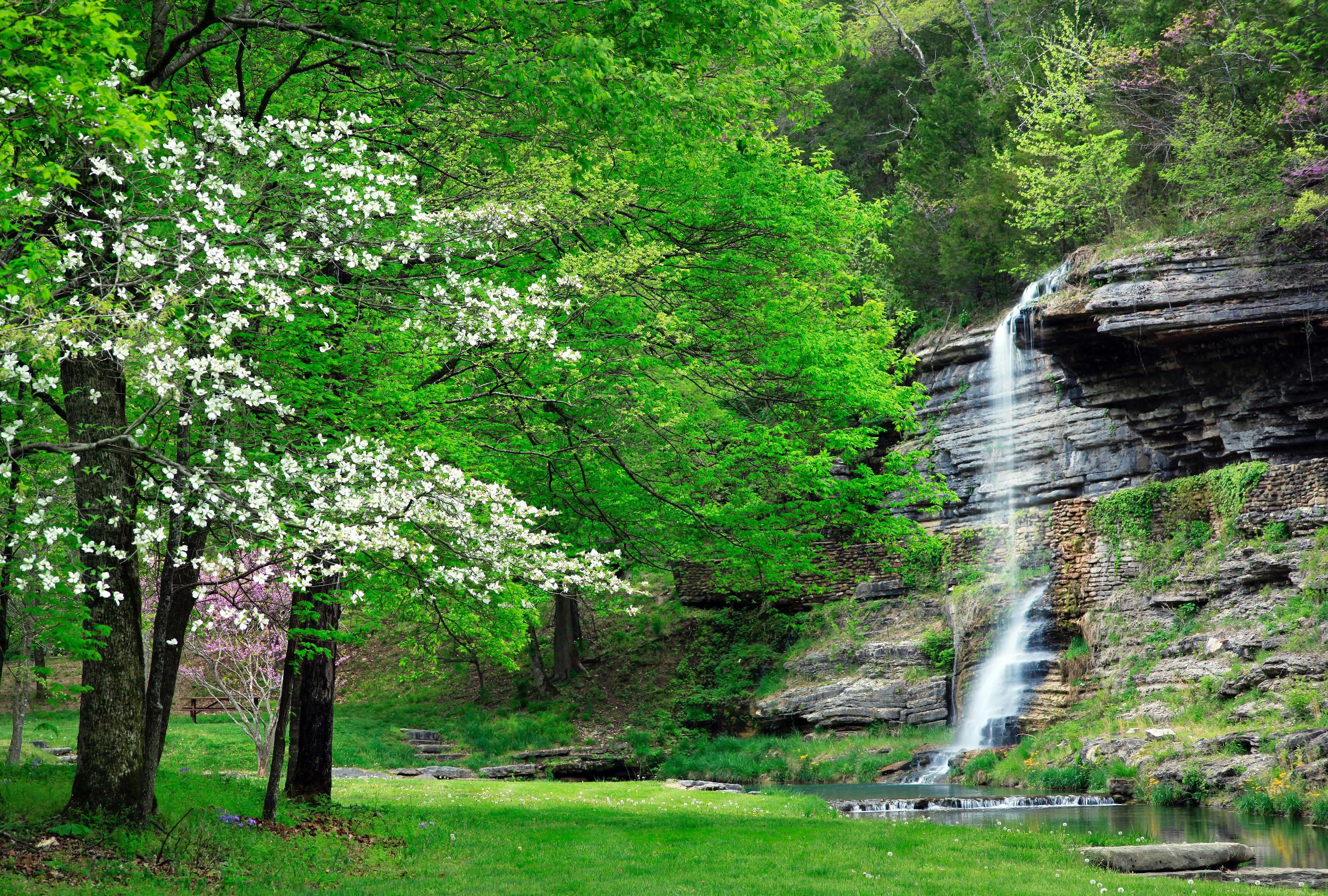 Visit Missouri | Articles | Beauty in Bloom: Missouri's ...